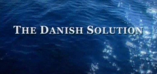Датское решение