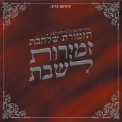 Shalhevet Orchestra - Songs For Shabbos