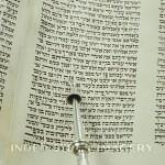 judaica-f1-038