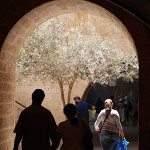 Arch way in Jerusalem's Jewish Quarter_fin