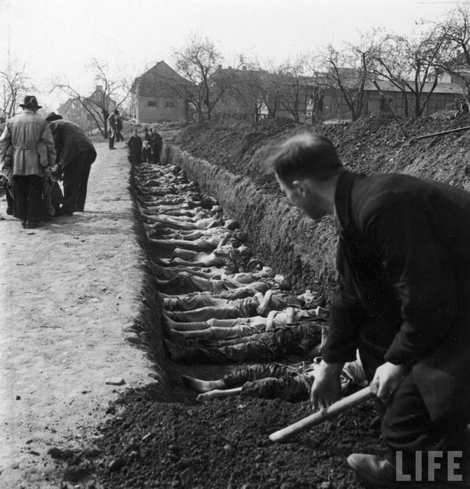 Концлагеря второй мировой войны