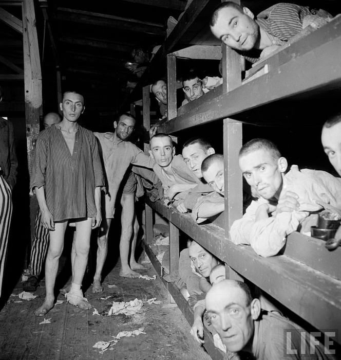 the history of building of concentration camps during world war ii The first mass arrest of jews also occurred as over 25,000 men were hauled off to concentration camps world war ii, the führer (supreme building of a.