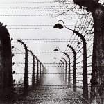 AuschwitzElectrifiedBarbedWireFence