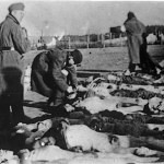 Buchenwald-J-Rouard-03