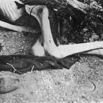 Buchenwald-J-Rouard-06