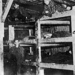 Buchenwald-J-Rouard-25