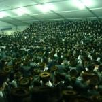 Hasidic_Celebration