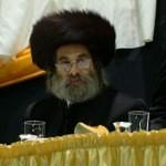 Rabbilipateitelbaumofzenta