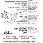 shalom_34s