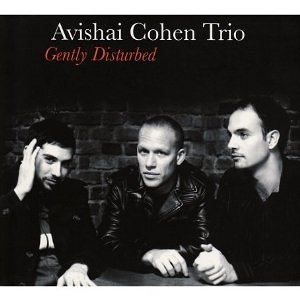 Avishai Cohen Trio - Gently Disturbed (2008)