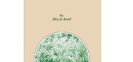 Roots and Patterns: Hebrew Morpho-syntax. Морфология и синтаксис иврита (2005)