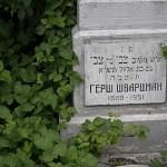 kladbishe chernovcy_059