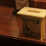 sinagoga brodskogo_52