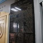 sinagoga chernovcy_15