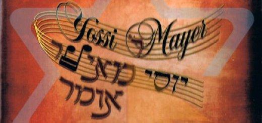 Yossi Mayer - Rabbi Meir Omer (2008)