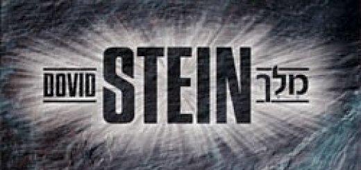 David Stein - Melech (2008)