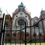 sinagoga_subotica_11