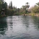 109004929HEawAF_ph
