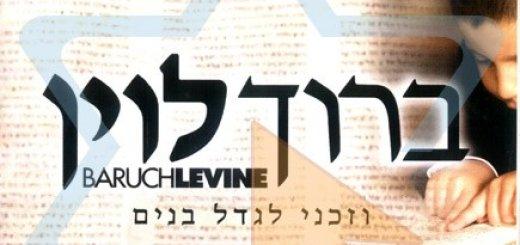 Baruch Levine - Vezakeini (2006)