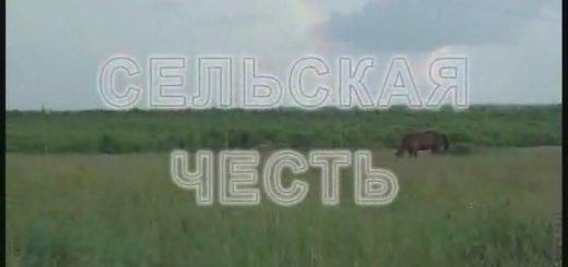 Сельская честь (2004)