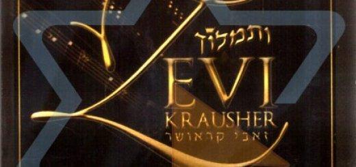 Zevi Krausher - Vesimloch (2006)