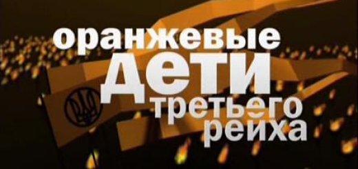 Оранжевые дети Третьего рейха (2010)