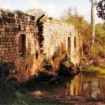 israel18 043 150x150 Фото Израиля, часть 18   Иерихон, Иордан, Гора Блаженств, Храм Гроба Господня   торрент