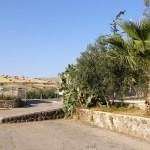 israel18 112 150x150 Фото Израиля, часть 18   Иерихон, Иордан, Гора Блаженств, Храм Гроба Господня   торрент