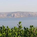 israel18 114 150x150 Фото Израиля, часть 18   Иерихон, Иордан, Гора Блаженств, Храм Гроба Господня   торрент