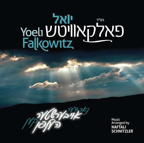 Yoel Folkovitch - Nor Di Aibishter (2013)