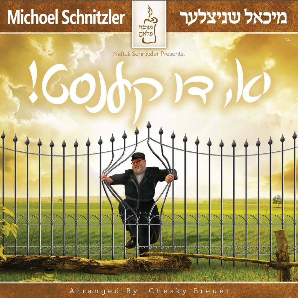 Michoel Schnitzler - Yu Di Kenst - Yes You Can (2014)