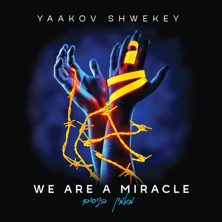 Yaakov Shwekey - We Are a Miracle (2016)