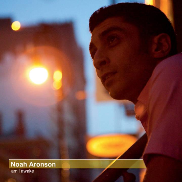 Noah Aronson - Am I Awake (2011)