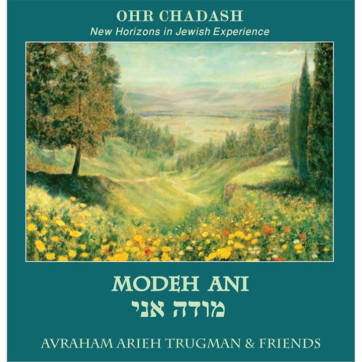 Avraham Arieh Trugman & Friends - Modeh Ani (2013)