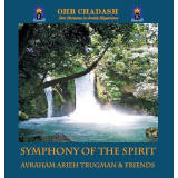 Avraham Arieh Trugman & Friends - Symphony of the Spirit (2012)