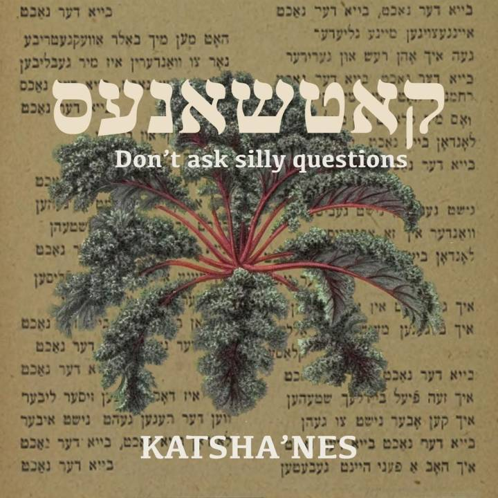 Katsha'nes - Don't Ask Silly Questions (2017)