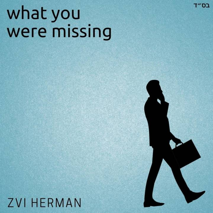Zvi Herman - What You Were Missing (2012)