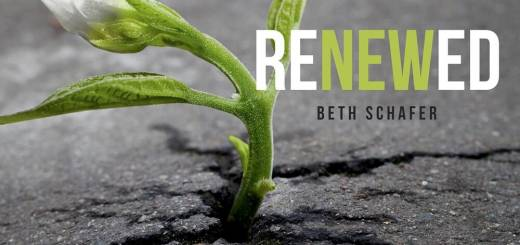 Beth Schafer - Renewed (2019)
