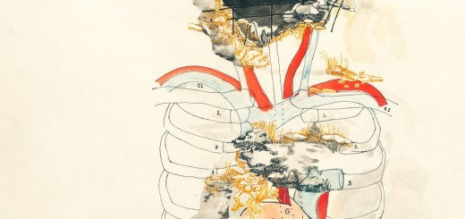 Toki Stern - Neshima (2019)